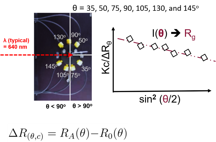 Angular dependence of scattered light is used to measure size, Rg, and molecular weight, Mw