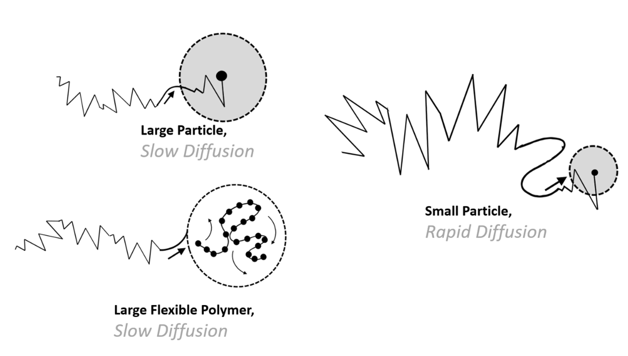 diffusion differences between large and small particles