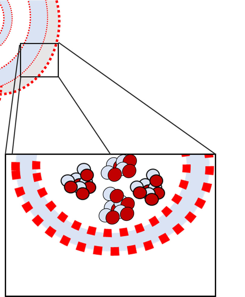 phase behavior of lamellae